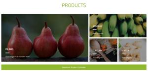 Ithaka Organic logo en webdesign